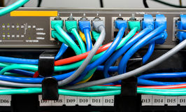 Patch panel and switch Royalty Free Stock Images
