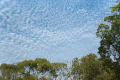 Patches of cirrus cloud Stock Photos