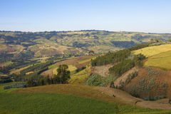 Patchwork av lantgårdar i Etiopien Royaltyfria Bilder