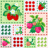 Patchwork background with strawberries and raspberries. Seamless vector pattern. Stock Photos