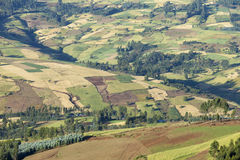Patchwork of farms in Ethiopia Royalty Free Stock Images