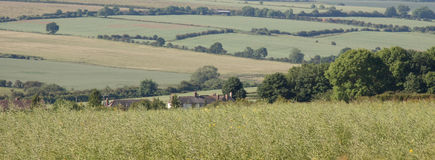 Patchwork fields. Of the English countryside in summer.  panoramic view Royalty Free Stock Image