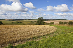 Patchwork fields in late summer Royalty Free Stock Photos