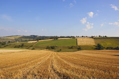 Patchwork harvest landscape Stock Photos