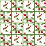 Patchwork jagody wzoru abstrakcjonistyczny bezszwowy koronkowy kwiecisty tło Obraz Stock