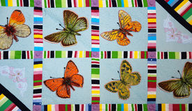 Patchwork quilt with butterflies. Colorful patchwork quilt with butterflies. Handmade work Royalty Free Stock Image