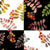 Patchwork retro autumn floral pattern texture background Stock Photography