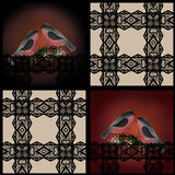 Patchwork retro lace and bullfinches on branch of holly Stock Photos