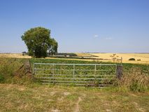 Patchwork summer landscape with metal farm gate and ash tree stock photos