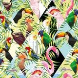 Patchwork tropical birds palm leaves multicolor background stock illustration