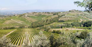 Patchwork Tuscan Countryside. Panoramic view across Tuscan countryside with patchwork effect created by rows of vines and clumps of olive trees stock image