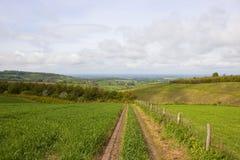 Patchworkfelder in den Yorkshire-Wolds Stockbilder