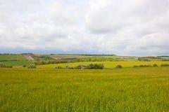 Patchworkfelder in den Yorkshire-Wolds Stockfoto