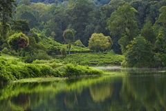 Patengan lake Stock Photography