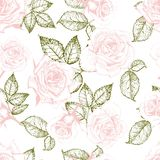 Patern вектора безшовное роз Иллюстрация нарисованная рукой выгравированная винтажная Стоковое фото RF