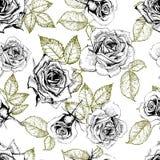 Patern вектора безшовное роз Иллюстрация нарисованная рукой выгравированная винтажная Стоковая Фотография RF