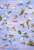 Patern Texture of Spring Flowers on the background of an old vin Stock Images