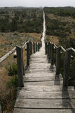 The path. Long path made of wood near to the sea and sand Stock Photos