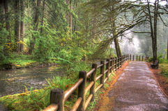 The path. Path next to creek. silver creek falls oregon Stock Photos