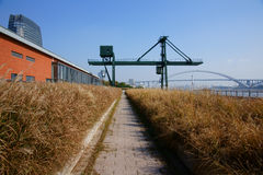 Path. This path in Xuhui Riverside. It's stand on abandoned railroad,and surrounded by reed Stock Photo