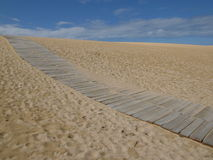 Path. In the dune Stock Photography