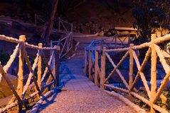 Fantasy path. Path at night in mystic lighting Royalty Free Stock Photography