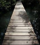Path1 Image libre de droits