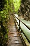 Path Stock Image