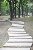Path. A shot of curved path Royalty Free Stock Photo