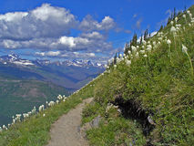 The Path. This picture was taken while I was hiking the Highline Trail in Glacier National Park Stock Images