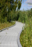 Path. Leading into vegetation Stock Images