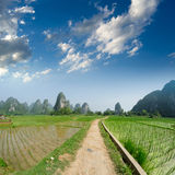 Path across the fields. In guilin,china Royalty Free Stock Photos