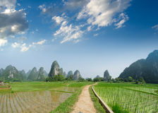 Path across the fields. In guilin,china Royalty Free Stock Images