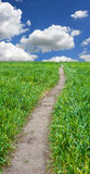 Path across green field Royalty Free Stock Images