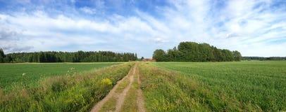 Path across green field leading to farmhouse on treeline. Panorama of narrow path across green field leading to farmhouse in Vantaa Finland Royalty Free Stock Photo