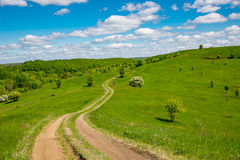 Path across green hill. Path across green meadow on hill Royalty Free Stock Photography