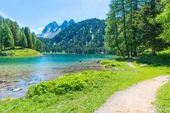 Summer day. Alps in Switzerland. Royalty Free Stock Photography
