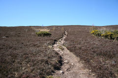 Path across moorland Royalty Free Stock Images