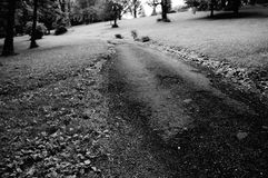 A path across. A path in a park leading to a forest in black and white Royalty Free Stock Image