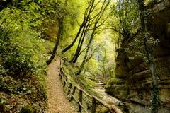 Path along the gorge. A path forwards along a mountain gorge stock photos