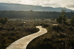 Path along the Kepler track Royalty Free Stock Images