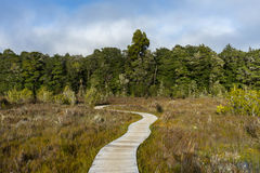 Path along the Kepler track Stock Photos