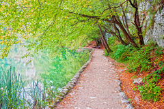 Path Along the Lake Royalty Free Stock Images