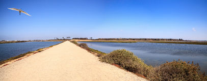 Path along the peaceful and tranquil marsh of Bolsa Chica wetlan Royalty Free Stock Photography