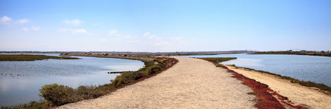 Path along the peaceful and tranquil marsh of Bolsa Chica wetlan Royalty Free Stock Images