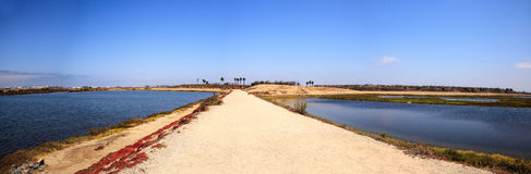 Path along the peaceful and tranquil marsh of Bolsa Chica wetlan Stock Images
