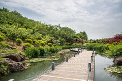 The path along the river Stock Photography