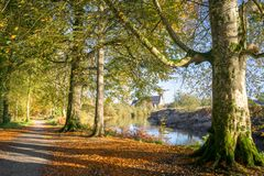 Autumn River Walk royalty free stock images