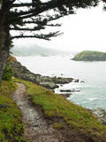 Path along rocky ocean shore with mist. Foot path through grass on the edge of a rocky ocean shoreline with rocky cliffs in the mist in the distance Stock Photo