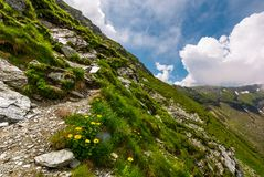 Path along the steep slope. Beautiful summer landscape with rocks on grassy hillside. low clouds cover the top of mountain ridge Royalty Free Stock Photos